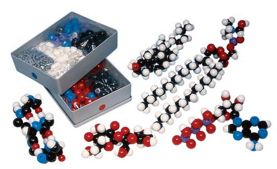 Biochemistry Model Kit