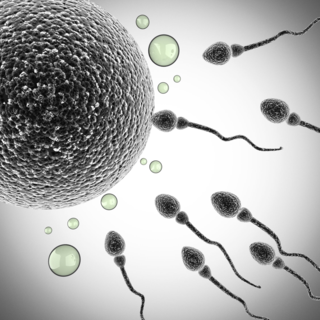 Contraception & Birth Control